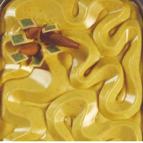 Kalup za dekoriranje sladoleda u banjici- Topice DUNE